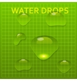 Set of transparent water bright drops vector image vector image