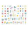 set spring colorful flowers set floral vector image