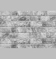 stone wall texture vector image