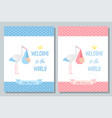 bashower card design birthday template invite vector image