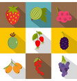 fruit from the garden icons set flat style vector image