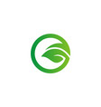 green leaf round eco logo vector image vector image