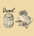 icon with mug beer hops sack vector image