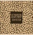 leopard skin texture print marks vector image