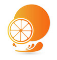 orange fruit splash icon vector image