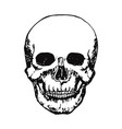 skull head sketch print hand drawn icon vector image