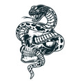 snake entwined with skull template vector image vector image