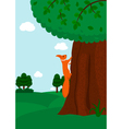 Squirrel climbing to the tree vector image vector image