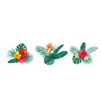 tropical hawaii flower bouquet set vector image vector image