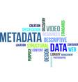 word cloud metadata vector image vector image