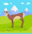 young deer in flat design vector image vector image