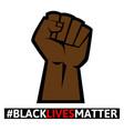 black lives matter protest sign vector image