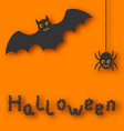 Cartoon bat and spider on orange background vector image vector image