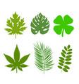 green leaf ecology nature element logo vector image vector image