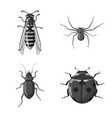isolated object of insect and fly logo collection vector image vector image