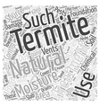 Natural Termite Treatment Word Cloud Concept vector image vector image