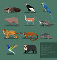 set of flat geometric south america animals vector image