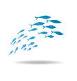 silhouettes groups sea fishes colony of vector image vector image