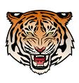 Tribal tiger color VS vector image