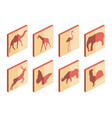 animal isometric icon set mammals and birds vector image