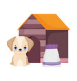 dog sitting in house with food package pets vector image vector image
