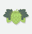 green hop cone engrawing beer brewing vector image vector image