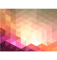 Pink triangle cave with circle texture vector image vector image