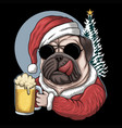 pug dog beer wearing a santa costume vector image vector image