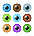 realistic multi colored eyeball iris pupils set vector image vector image