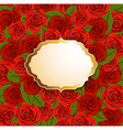 red roses and label vector image vector image