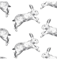Seamless pattern with hares vector image vector image