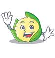 waving cauliflower character cartoon style vector image vector image