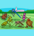 insects and bugs funny cartoon characters group vector image