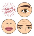young woman facial wrinkles troubles for anti vector image