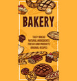 bread sketch banner for bakery shop vector image vector image