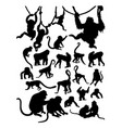 monkey detail silhouette vector image vector image