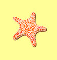 orange spotty starfish on a yellow sand vector image vector image