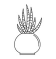 striped cactus pot icon outline style vector image vector image