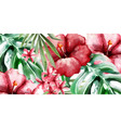 tropic flowers background watercolor vector image vector image