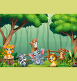 a group baanimals playing inside wooden vector image vector image