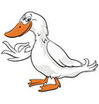 cartoon duck farm bird animal character