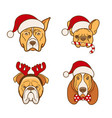 four dogs in a santa claus hat vector image