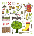 garden tools set with seed packets tree and vector image