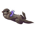 grey otter playing with purple exotic sea shell vector image
