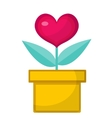 heart flower pot icon flat design isolated vector image vector image