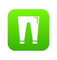 men fashion accesory pants icon green vector image