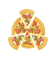 Pizza With Meat And Vegetables vector image vector image