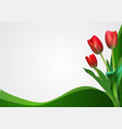 abstract backgroundn with tulips flowers vector image