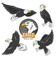 collection of cartoon eagles flying birds isolate vector image
