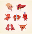 cute character cartoon human internal organs vector image vector image